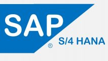 SAP Certified Consultant